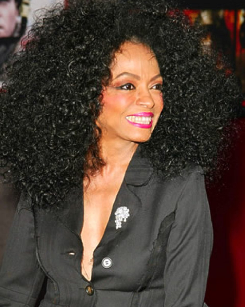 Diana Ross- Loose Curls- Custom Celebrity Lace Wig