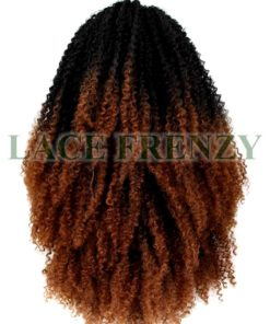 O'sara - Afro Curly - Lace Front Wig