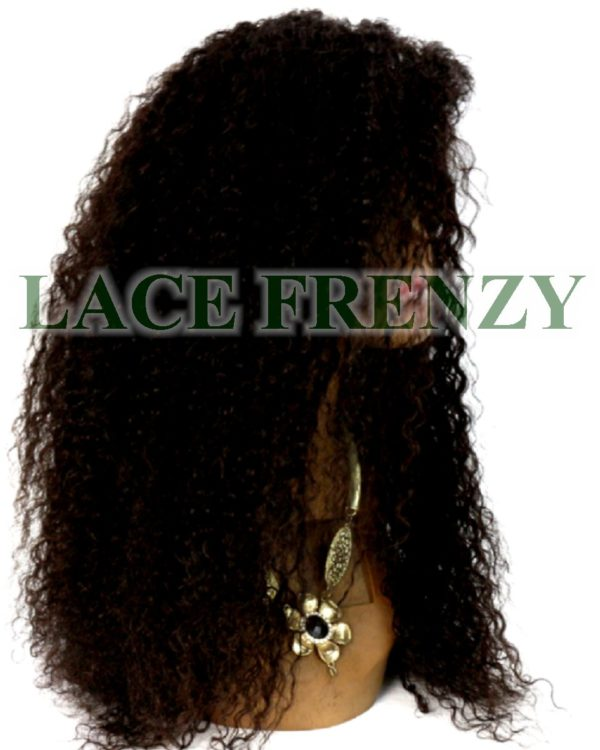 Recee' - 18 Inches- Curly - Brazilian Virgin Hair- Lace Front Wig