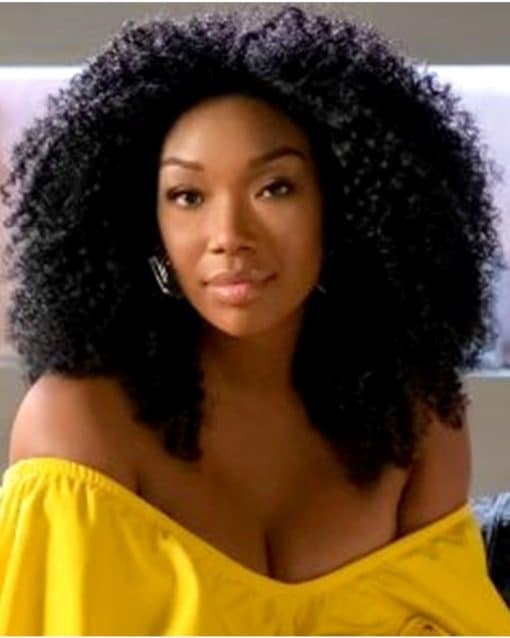 Brandy Afro Kinky Curly Custom Celebrity Lace Wig