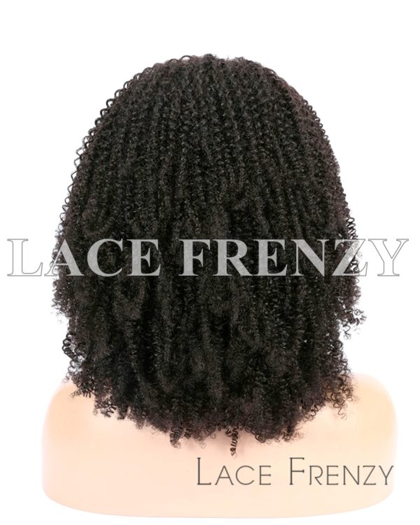 Afro Kinky Curly Burmese Virgin Human Hair 13x6 Inches Lace Front Wig