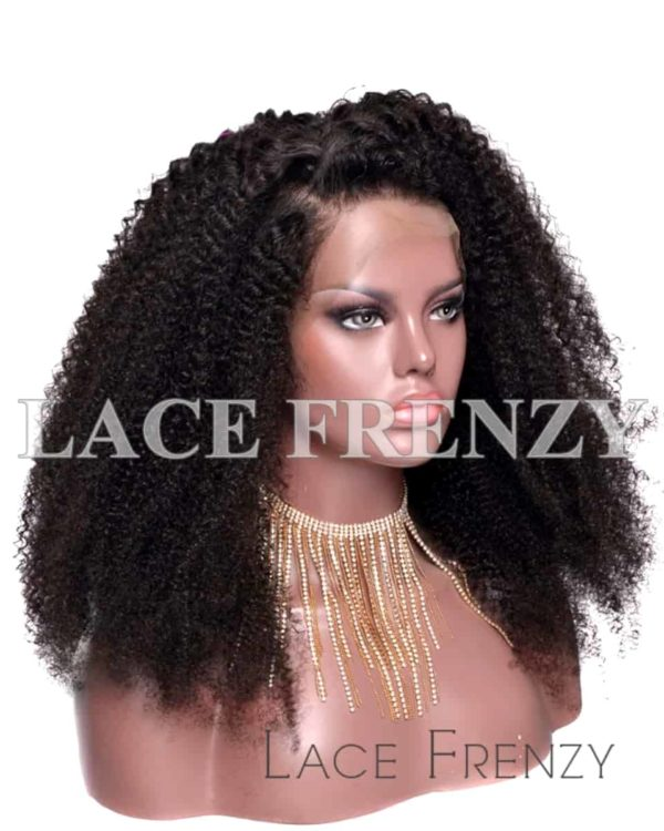 Destiny Kinky Curly Virgin Human Hair Lace Front Wig